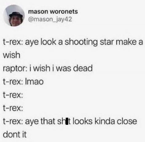 Tweet about raptor wishing it was dead from a shooting star