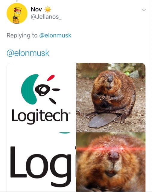 dank meme about beaver with glowing eyes when they see the word log in logitech