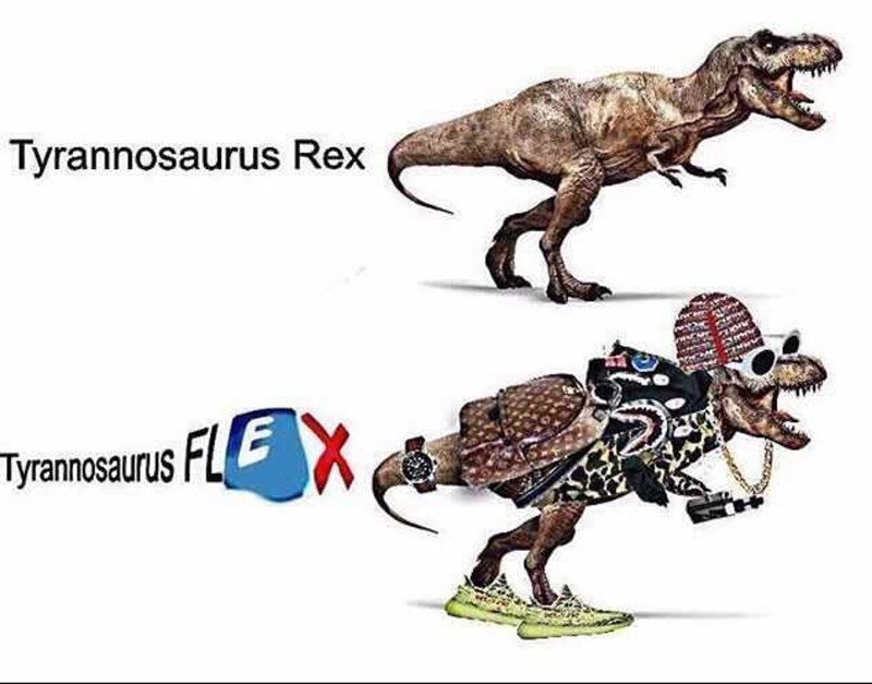 dinosaur dressed in swag captioned as T-Flex