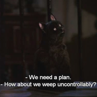 Salem the cat from Sabrina offering to weep uncontrollably as a plan