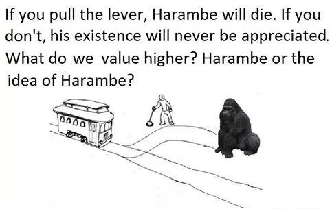 trolley problem making us choose between killing Harambe and having him stay unappreciated