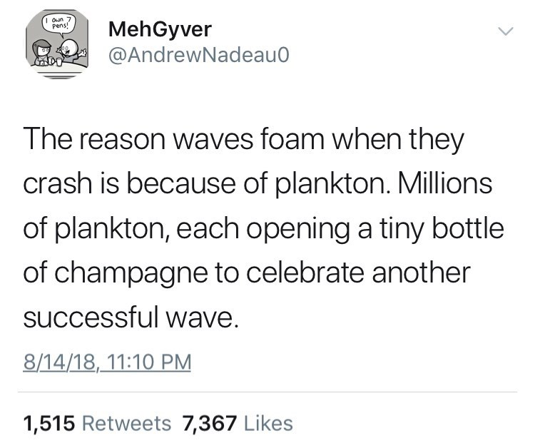 Tweet explaining waves foam when they crash because millions of plankton open bottles of champagne