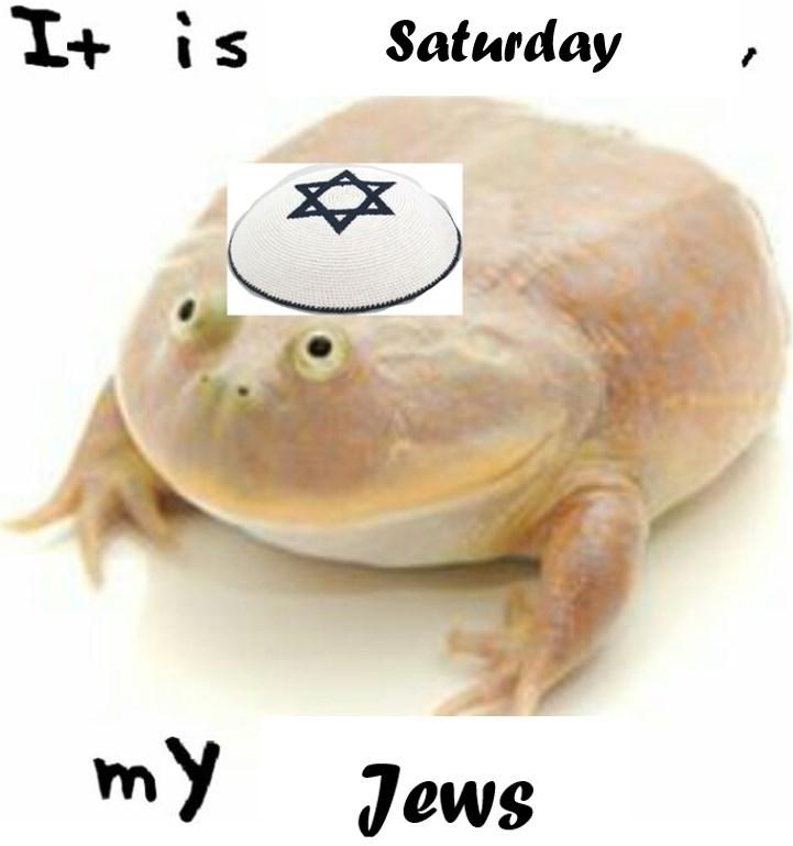 jewish meme - Turtle - I+ is Saturday my Jews