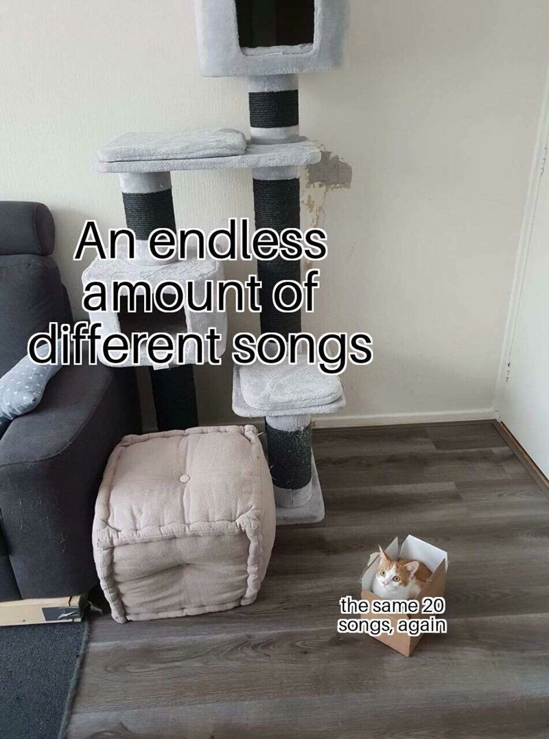 """Pic of a cat castle, which represents """"An endless amount of different songs"""" next to a cat sitting in a tiny box, which represents """"The same 20 songs, again"""""""