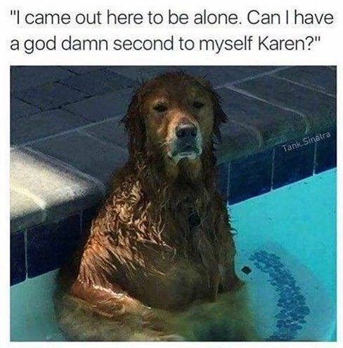 """Dog - """" came out here to be alone. Can I have a god damn second to myself Karen?"""" Tank Sinatra"""