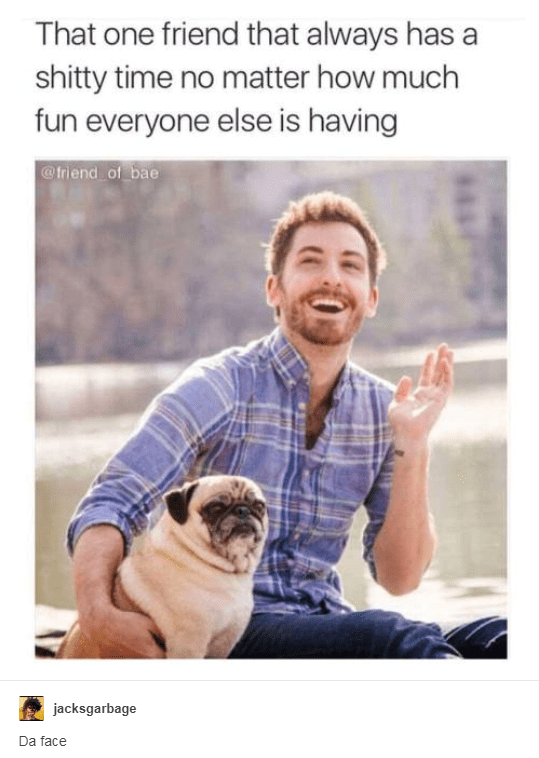 Companion dog - That one friend that always has shitty time no matter how much fun everyone else is having @Iriend of bae jacksgarbage Da face