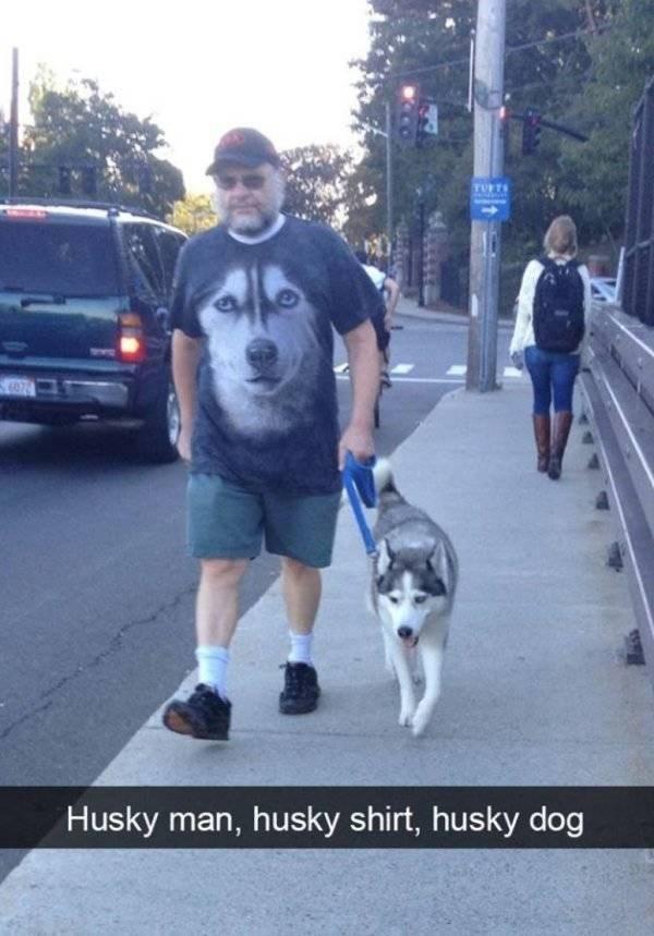 Dog - TUFTS Husky man, husky shirt, husky dog