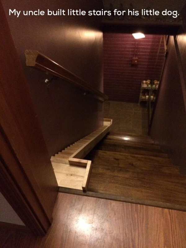 wholesome meme - Floor - My uncle built little stairs for his little dog.