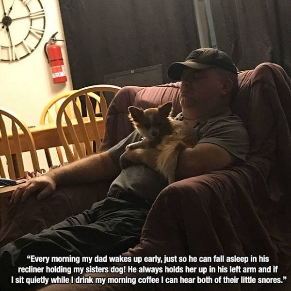 """wholesome meme - Photo caption - """"Every morning my dad wakes up early, just so he can fall asleep in his recliner holding my sisters dog! He always holds her up in his left arm and if I sit quietly while I drink my morning coffee I can hear both of their little snores."""""""