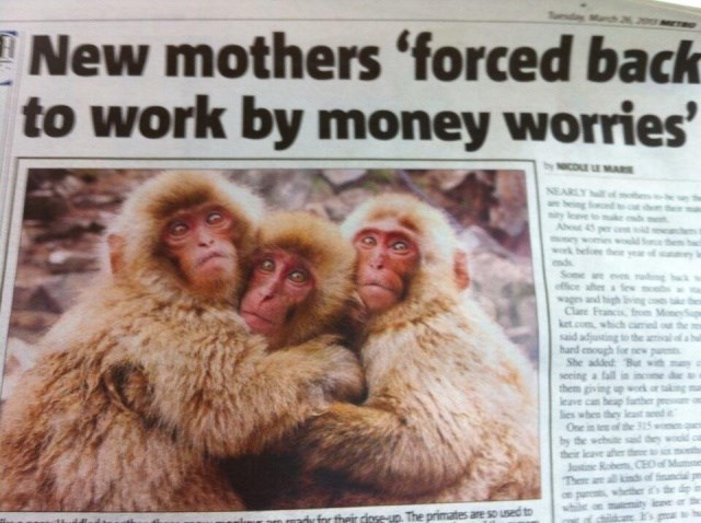 headline - Macaque - New mothers 'forced back to work by money worries' COE E MARE NEARLY abeing ty lev Ab mey wk helone the mds e ev office aher wages and Clare Franci ket.com which said adjusting hard enough for She added seeing a fall them giving up leave can heap lies when they One in tee of the 315 by the wehe their leave ae Justine Robe CEO allkind Then se-up. The primates are so used to