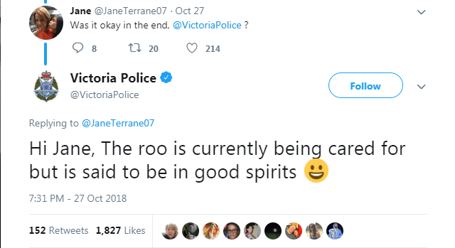 Text - Jane @JaneTerrane07 Oct 27 Was it okay in the end, @VictoriaPolice? t 20 214 8 Victoria Police Follow @Victoria Police Replying to @JaneTerrane07 Hi Jane, The roo is currently being cared for but is said to be in good spirits 7:31 PM - 27 Oct 2018 152 Retweets 1,827 Likes