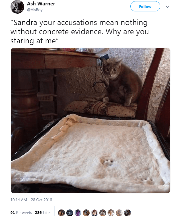 """Floor - Ash Warner Follow @AlsBoy """"Sandra your accusations mean nothing without concrete evidence. Why are you staring at me"""" 10:14 AM 28 Oct 2018 91 Retweets 286 Likes"""