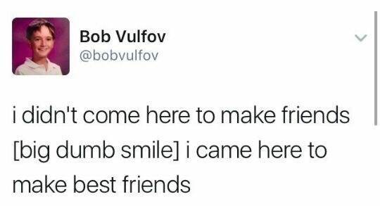 meme - Text - Bob Vulfov @bobvulfov i didn't come here to make friends [big dumb smile] i came here to make best friends