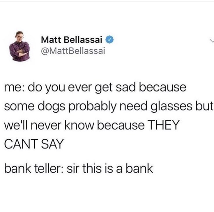 meme - Text - Matt Bellassai @MattBellassai me: do you ever get sad because some dogs probably need glasses but we'll never know because THEY CANT SAY bank teller: sir this is a bank