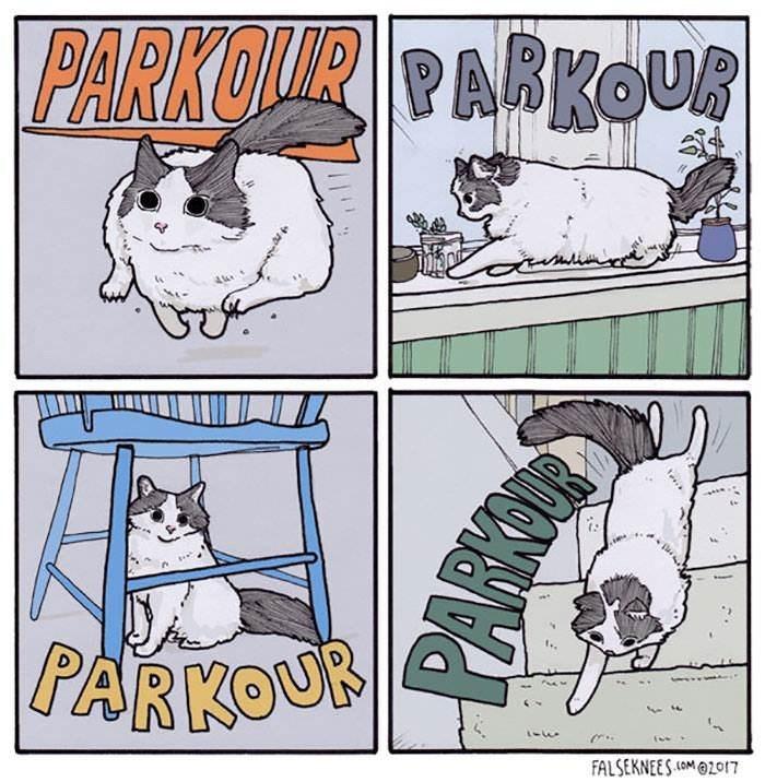 Cartoon - PARKOUR PARKOUR |PARKOUR FALSEKNEES(OM2017 PARKON