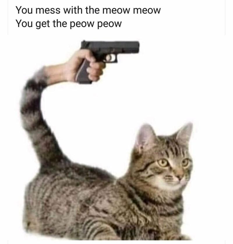 Cat - You mess with the meow meow You get the peow peow