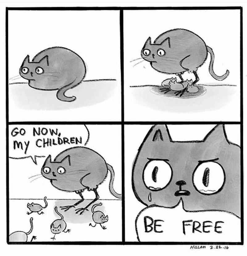Cartoon - GO NOW, my CHILDREN BE FREE HILLAM 2.22.16