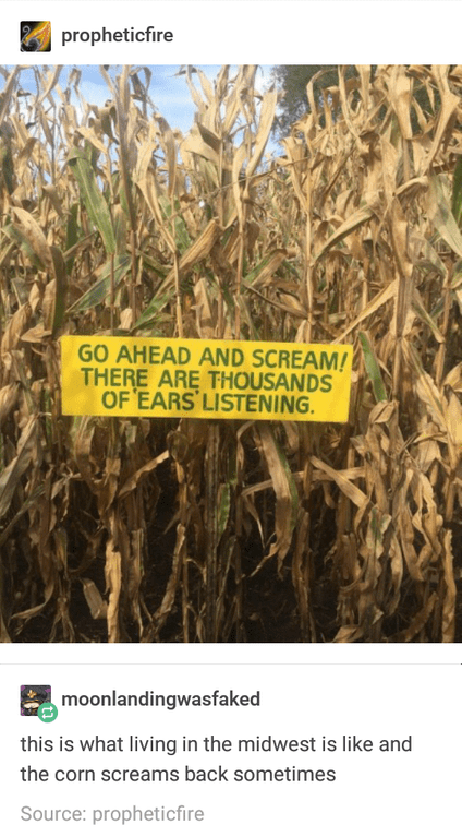 Tumblr post with picture of corn field and an ominous sign in front of it