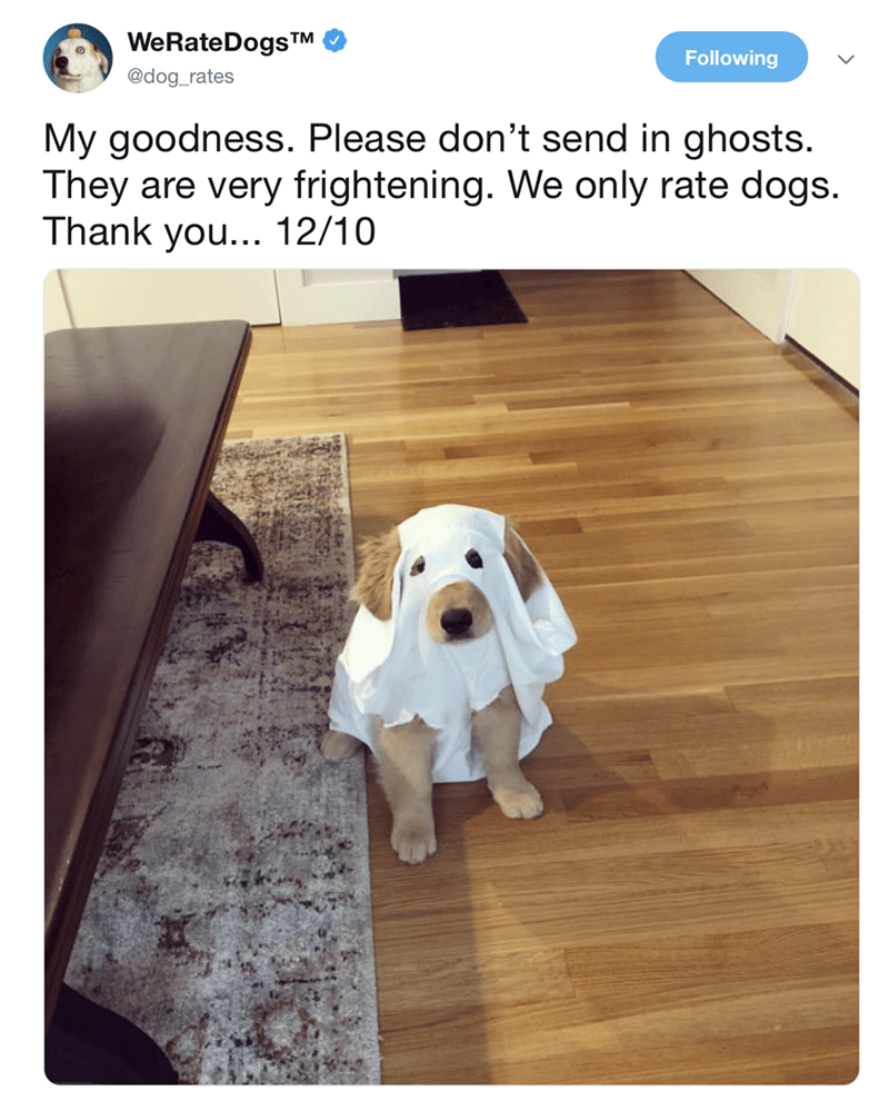 "Tweet from We Rate Dogs that reads, ""My goodness. Please don't send in ghosts. They are very frightening. We only rate dogs. Thank you...12/10"" above a pic of a cute golden retriever puppy wearing a ghost costume"