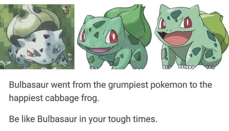 meme - Cartoon - boo coco Bulbasaur went from the grumpiest pokemon to the happiest cabbage frog. Be like Bulbasaur in your tough times.