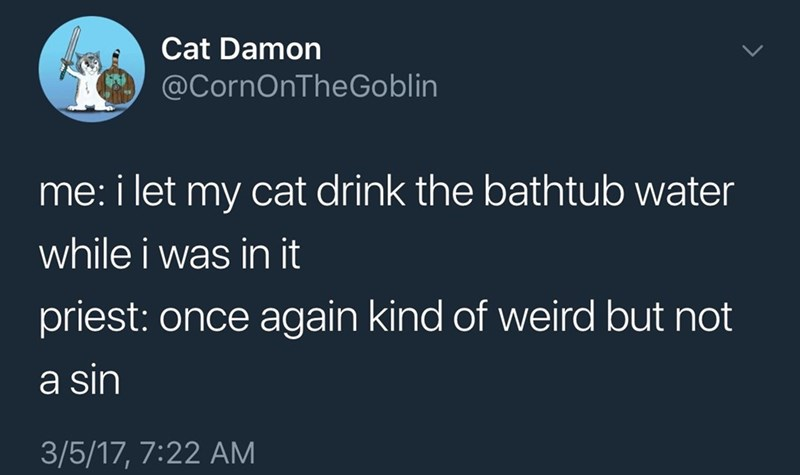 Text - Cat Damon @CornOnTheGoblin me: i let my cat drink the bathtub water while i was in it priest: once again kind of weird but not a sin 3/5/17, 7:22 AM