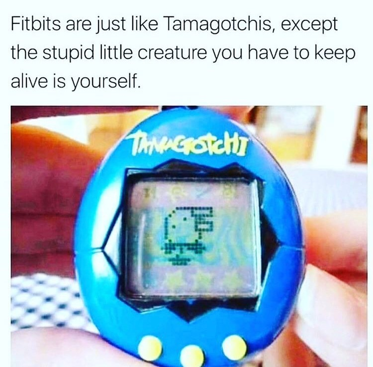 stupid meme - Text - Fitbits are just like Tamagotchis, except the stupid little creature you have to keep alive is yourself. TANAEROTCHT