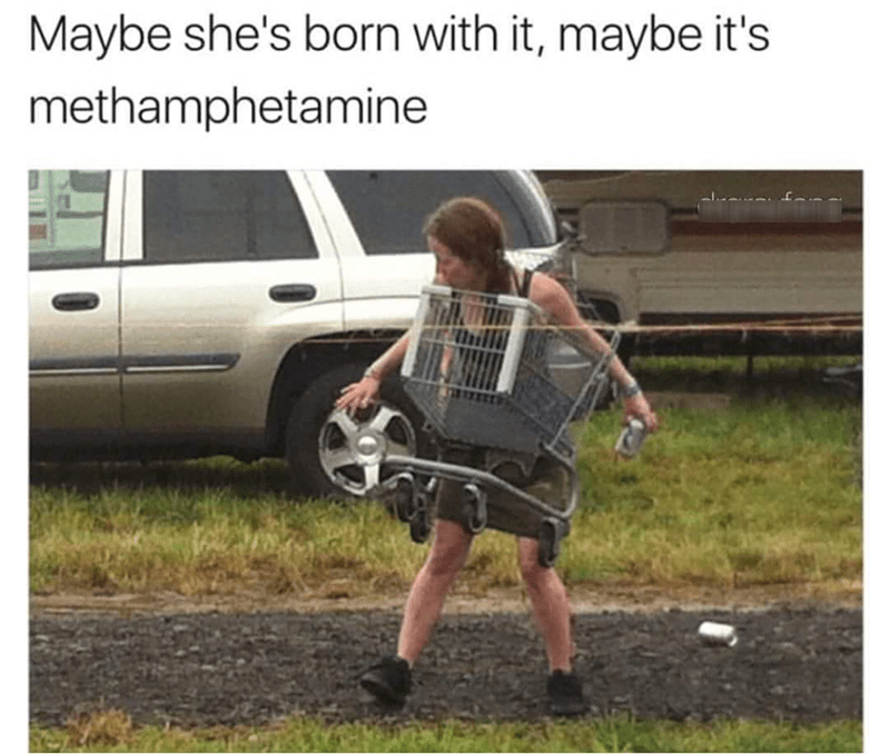 stupid memes of a woman stuck in a shopping cart