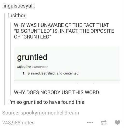 stupid memes of the words disgrunteled the opposite of gruntled