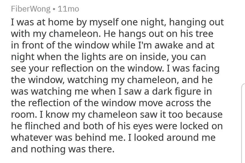 OP sees a dark figure reflected in their bedroom window, pet chameleon also sees it