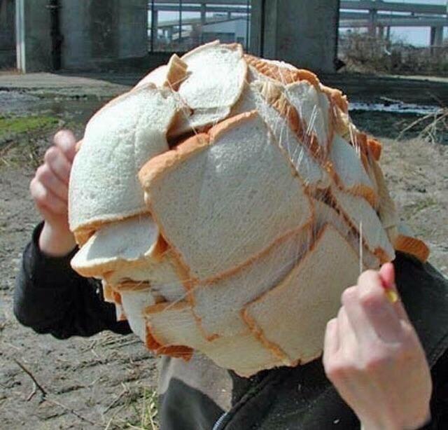 Cheezburger Image 9231658752
