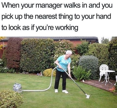 Tree - When your manager walks in and you pick up the nearest thing to your hand to look as if you're working