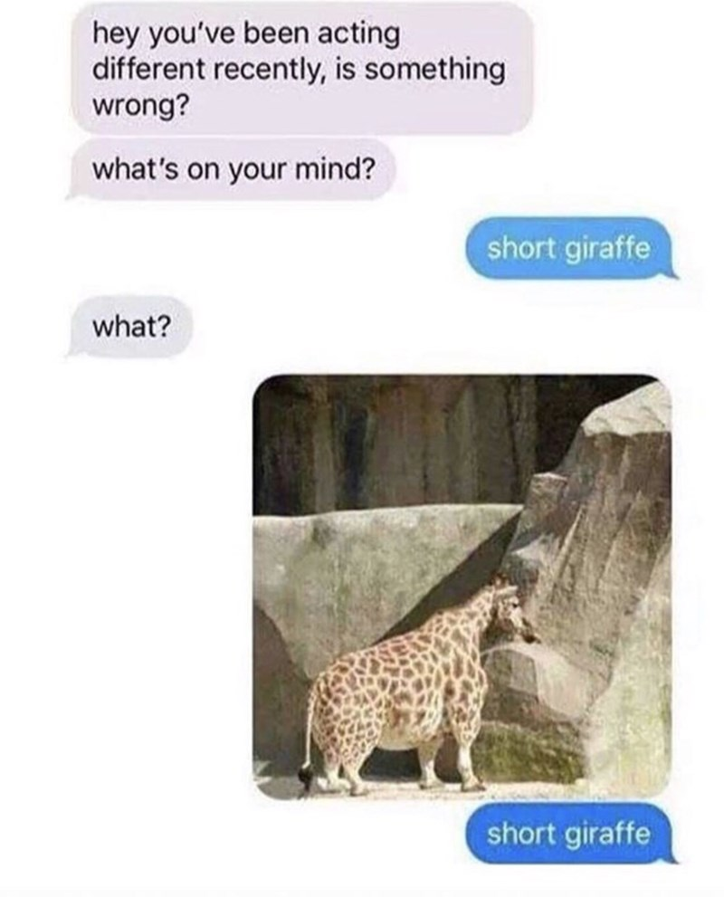 Meme about someone acting differently because they're thinking about short giraffe