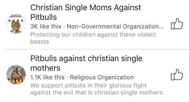 Facebook group of pitbulls against Christian single mothers