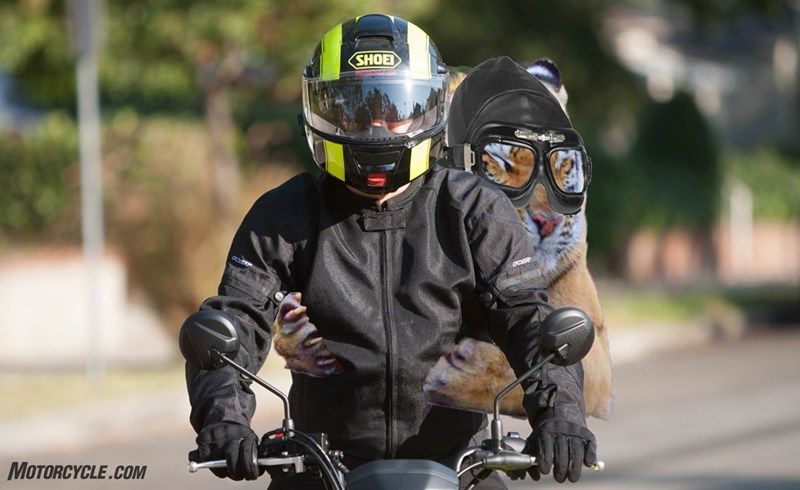 Helmet - SHOEI MOTORCYCLE.COM