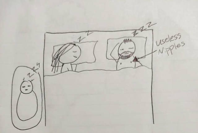 Drawing - useless NEPles
