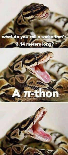 Python family - what do you calla snake that's 3.14 meters long? AT-thon