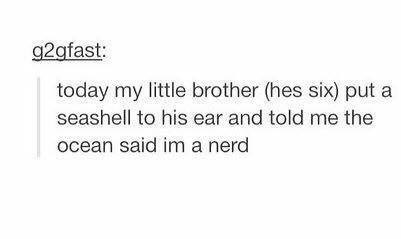 "Tumblr post that reads, ""Today my little brother (he's six) put a seashell to his ear and told me the ocean said I'm a nerd"""