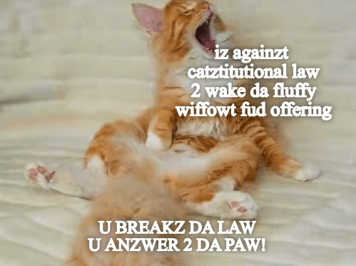 U BREAK DA LAW, U ANZWER 2 DA PAW!