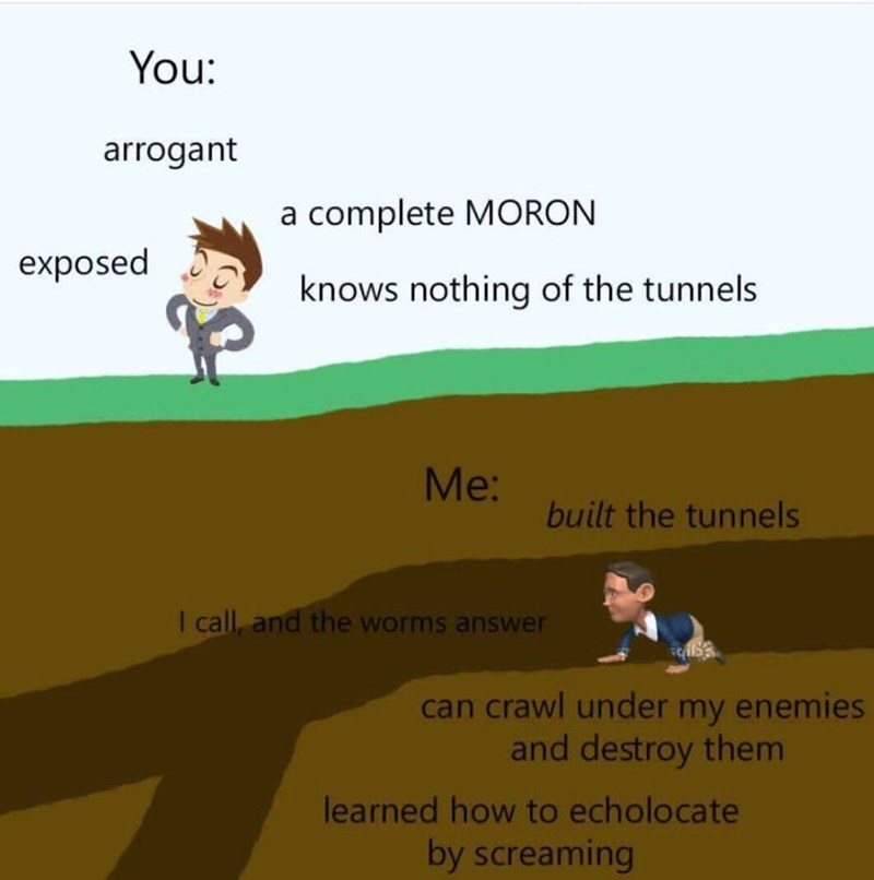Illustration of a guy digging tunnels implying that he's smarter than the guy standing above ground