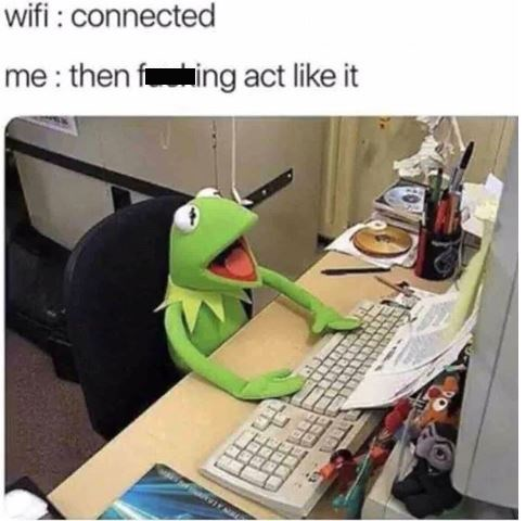 Kermit the frog meme about the WiFi not working despite showing that it's connected