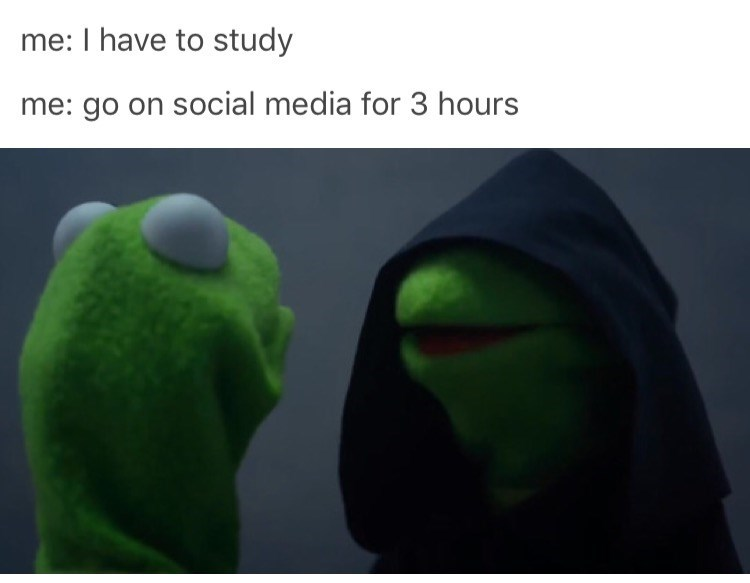 Kermit the frog meme about procrastinating using social media