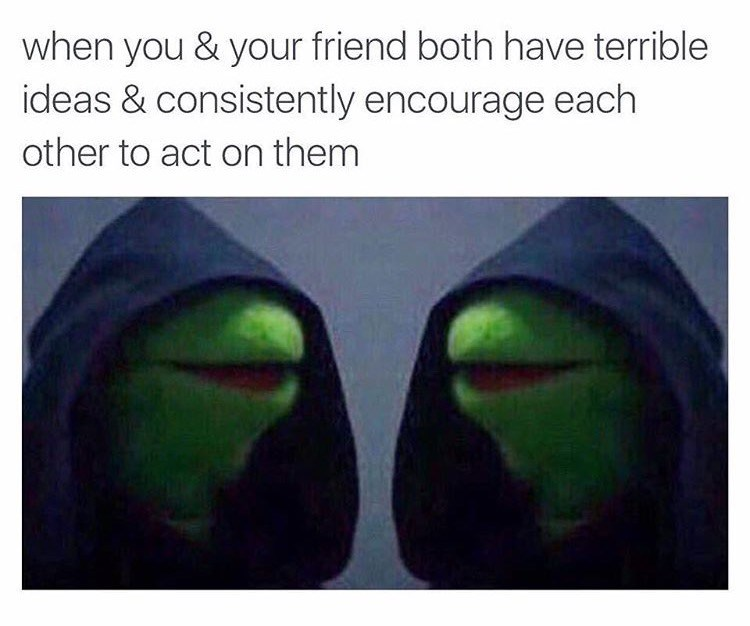 Kermit the frog meme about having bad ideas and acting on them with your friend