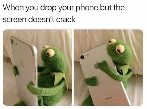 Kermit the frog meme about dropping your phone without the screen cracking