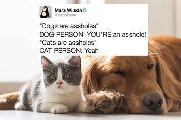 dog meme on how dog people defend their dog about not being an asshole and cat people don't