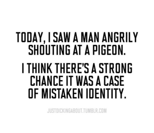 Text - TODAY, I SAW A MAN ANGRILY SHOUTING AT A PIGEON. ITHINK THERE'S A STRONG CHANCE IT WAS A CASE OF MISTAKEN IDENTITY JUSTDICKINGABOUT.TUMBLR.COM