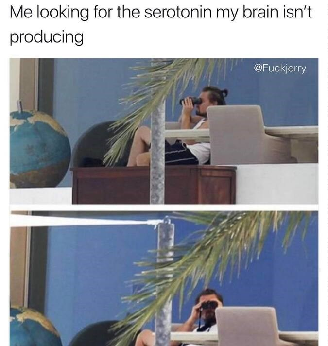 meme about looking for serotonin with pictures of Leonardo DiCaprio using binoculars