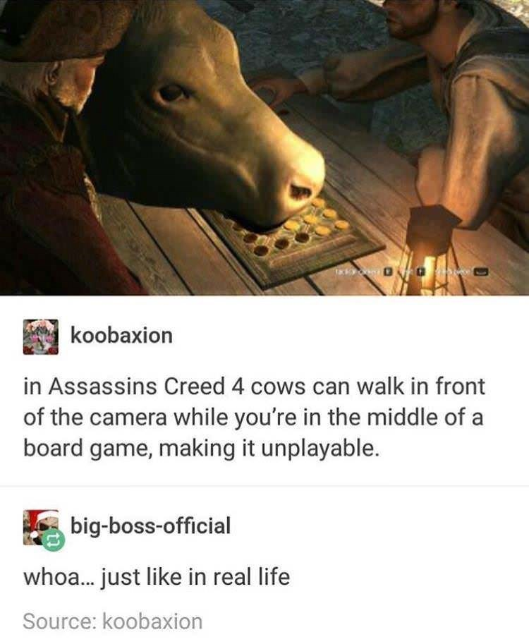 meme about cows blocking board game in Assassins Creed 4