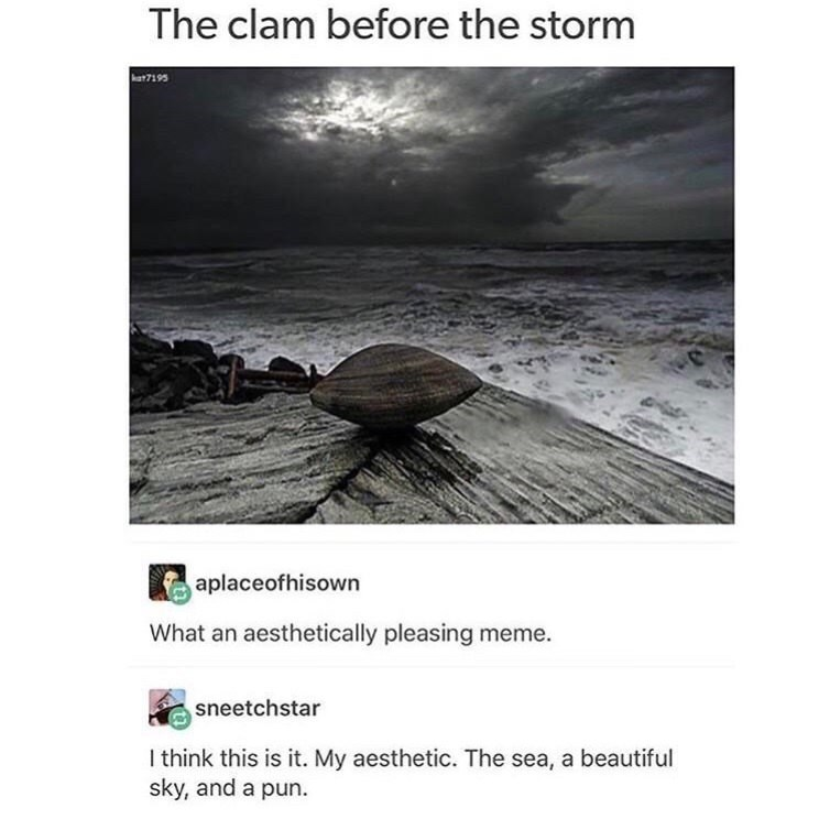 pun about the calm before the storm with aesthetic picture of clam