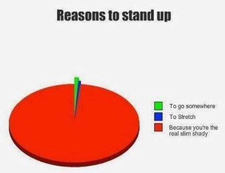 caption that reads, reasons to stand up and chart represents because your're the real slim shady