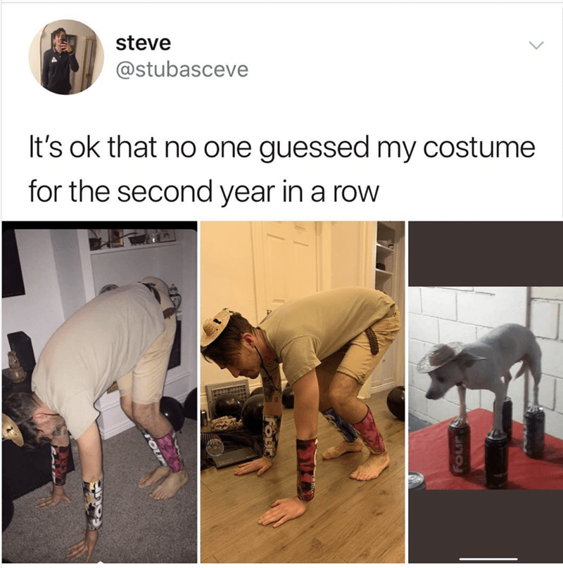 post of a costume of a dog standing on top of cans